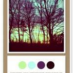 Color Card 012: Baby Green, Aqua, Vibrant Grape, Dark Chocolate
