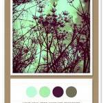 Color Card 016: Light Aqua, Mint, Eggplant, Mushroom