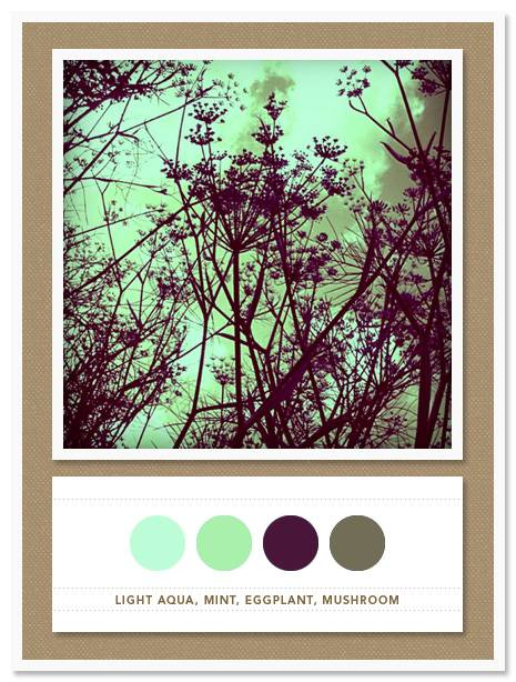 016 Color Card 016: Light Aqua, Mint, Eggplant, Mushroom