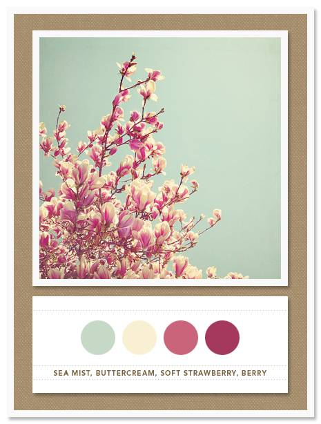 Color Card 032