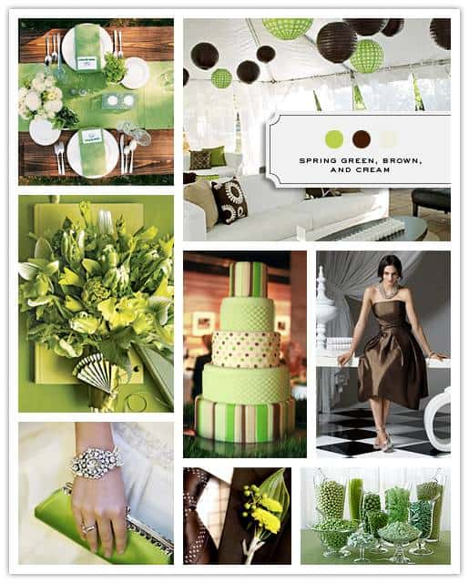 Green, Brown and Cream Color Palette