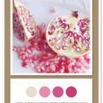 Color Card 035: Ivory, Cherry Blossom, Berry Sorbet, Fruit Punch