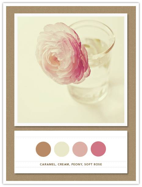 Color Card 043: Caramel, Cream, Peony, Soft Rose