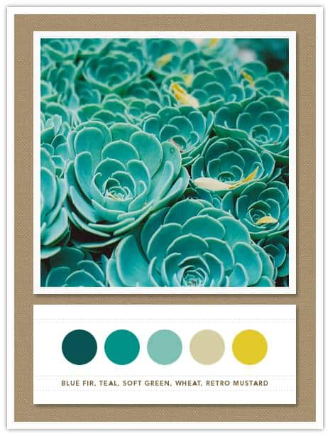 003 Color Card 058: Blue Fir, Teal, Soft Green, Wheat, Retro Mustard