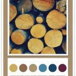 Color Card 059: Retro Yellow, Fawn, Taupe, Deep Pool, Denim, Aubergine