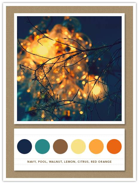 Color Card 061