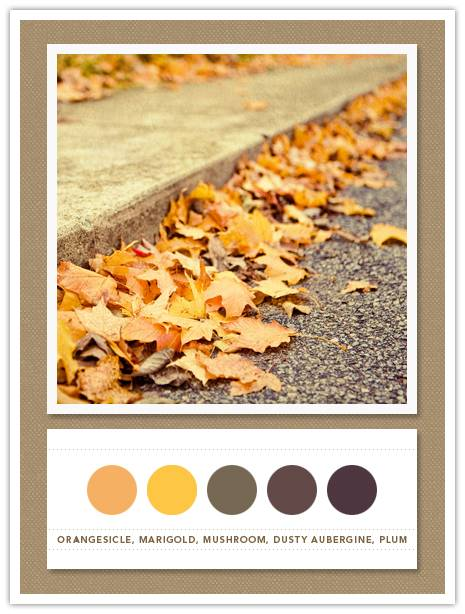 Color Card 069: Orangesicle, Marigold, Mushroom, Dusty Aubergine, Plum