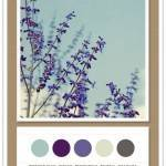 Color Card 068: Powder Blue, Indigo, Periwinkle, Marble, Graphite