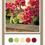 Color Card 072: Fern, Pear, Peach, Brick Red, Burgundy