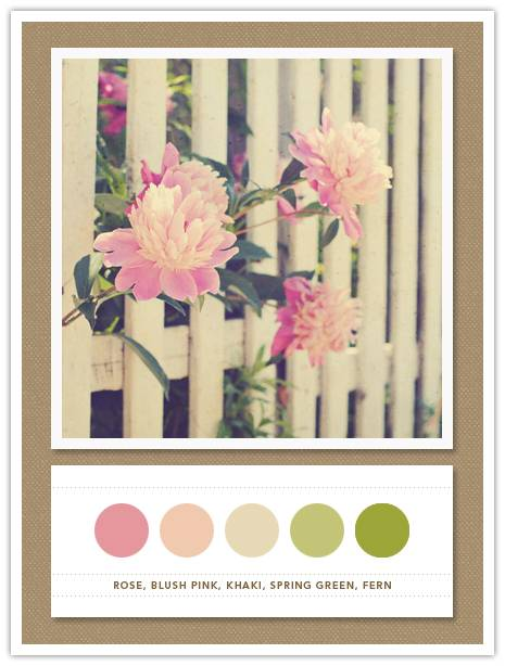 81 Color Card 081: Rose, Blush Pink, Khaki, Spring Green, Fern