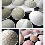 Patterned Plates from Cynthia Vardhan Ceramics
