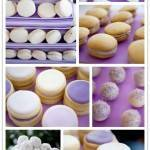 Tasty Tidbits from Shauna Younge Dessert Tables