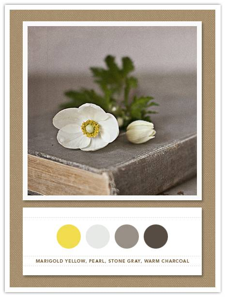 012 Color Card 102: Marigold Yellow, Pearl, Stone Gray, Warm Charcoal