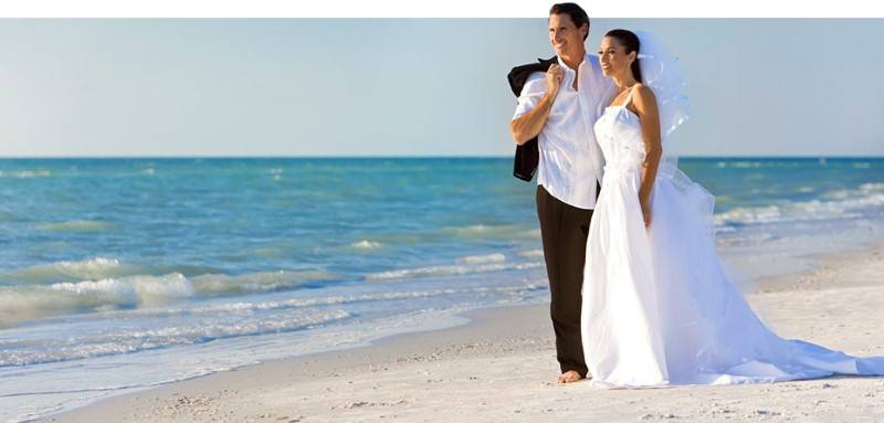 matrimonio June Wedding Facts and Statistics
