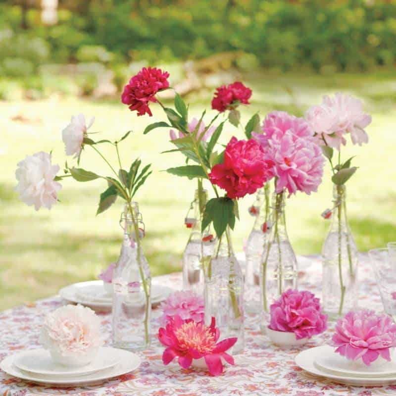 peonies-table-md107581_sq