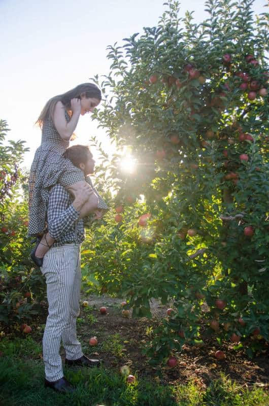 Apple Orchard Rendezvous (13)