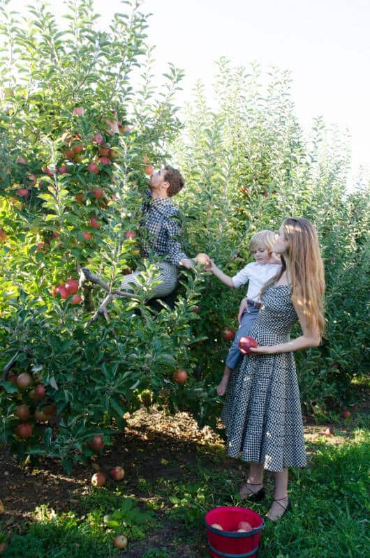 Apple Orchard Rendezvous (17)