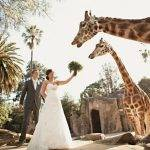 Unconventional Wedding Venue Ideas