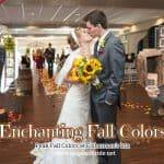 Enchanting Fall Colors
