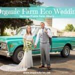 Organic Farm Eco Wedding