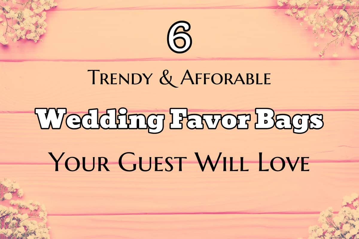 6 Trendy and Affordable Wedding Favor Bags Your Guest Will Love