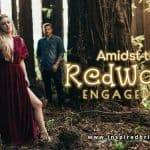 Amidst the Redwoods Engagement