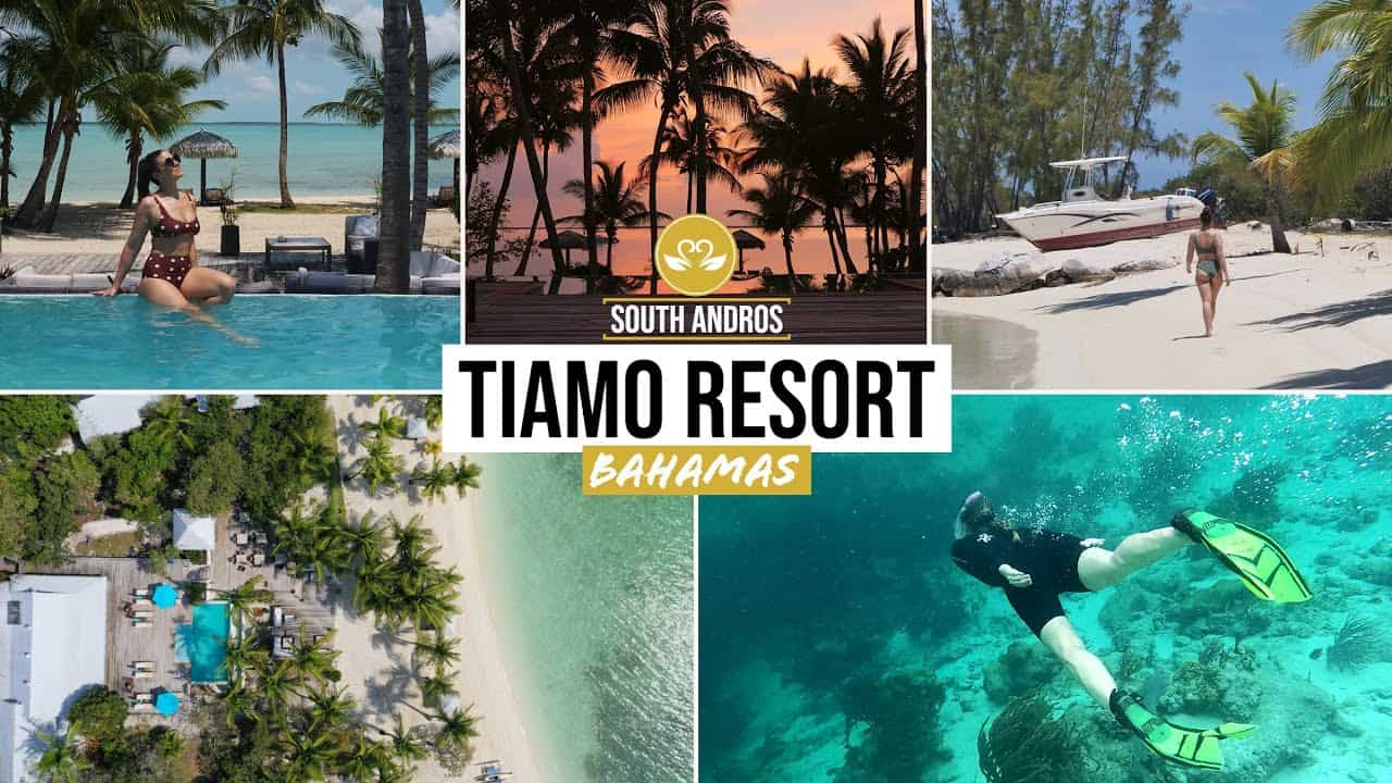 Image result for The Tiamo Resort, South Andros - Luxury