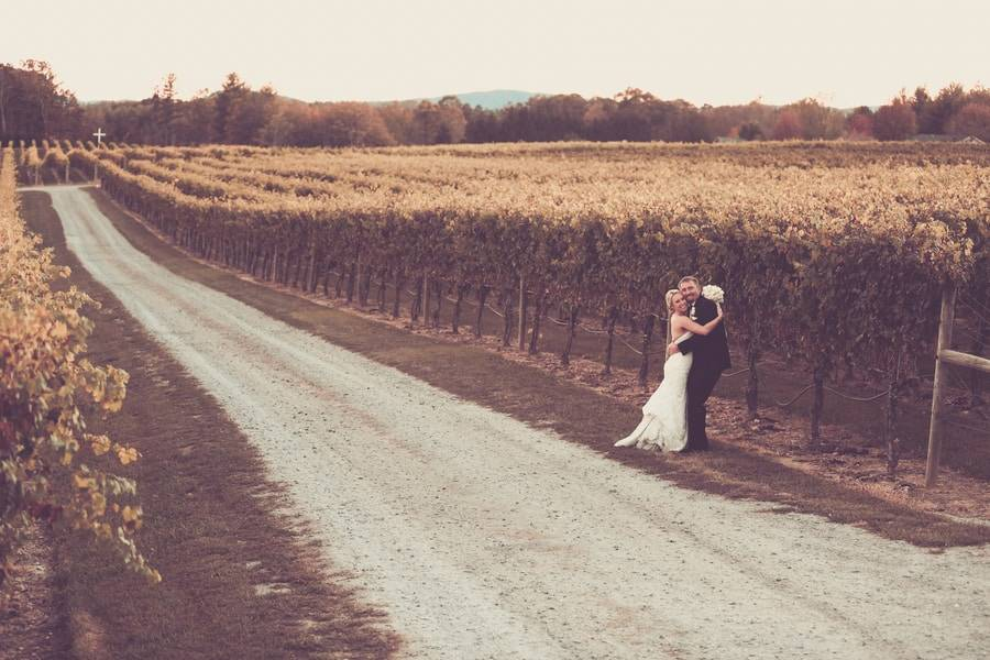 Contemporary Vineyard Wedding
